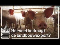 Landbouwexport